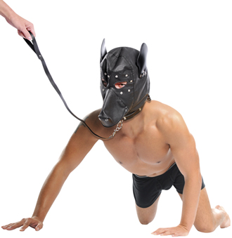 Doggy Hood with Leash