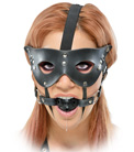 Masquerade Mask and Ball Gag